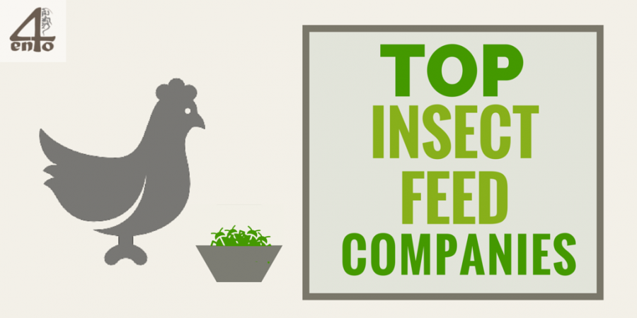 Top Insect Feed Companies